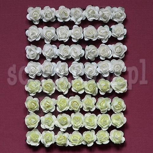 http://sklep.scrap.com.pl/images/produkty/LM_KWR12_6178_4e46f958dd970.jpg