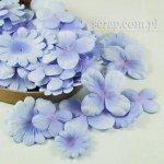 hortensje i margerytki -zestaw błękitny cieniowany