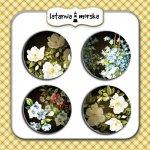 plakietki flair buttons Tajemniczy Ogród #3 matowe