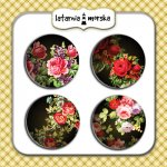 plakietki flair buttons Tajemniczy Ogród #2 matowe