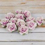 Kwiatki Prima - Encore - Lavender