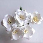 Kwitnąca wiśnia białe kwiatuszki 25mm 5szt.