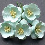 Kwitnąca wiśnia zielone kwiatuszki 25mm 5szt.