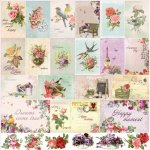 papier French Journey - Cards